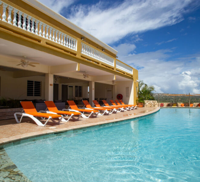 Hillside apartments Bonaire - -4365