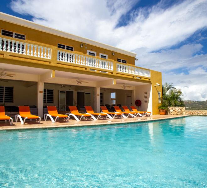 Hillside apartments Bonaire - -4366