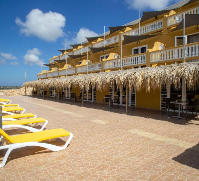 Hillside apartments Bonaire - -4447