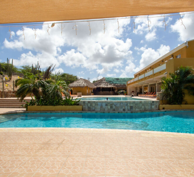 Hillside apartments Bonaire - -4460
