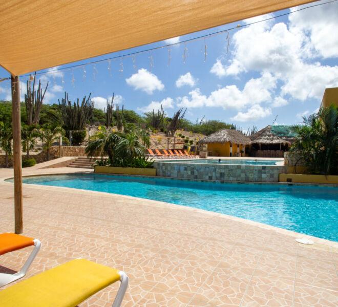 Hillside apartments Bonaire - -4461