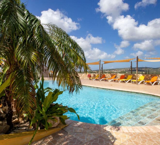 Hillside apartments Bonaire - -4464